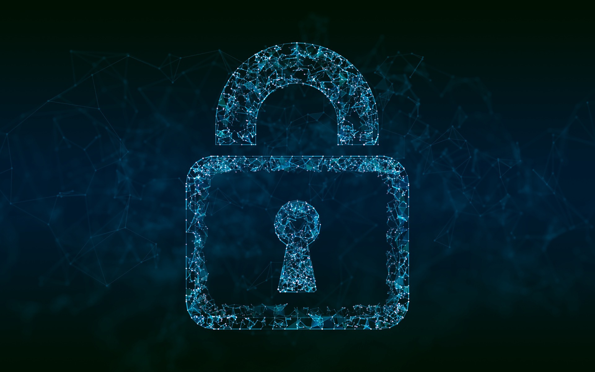 Public Data at Risk: Cyber Threat to the Networked Government